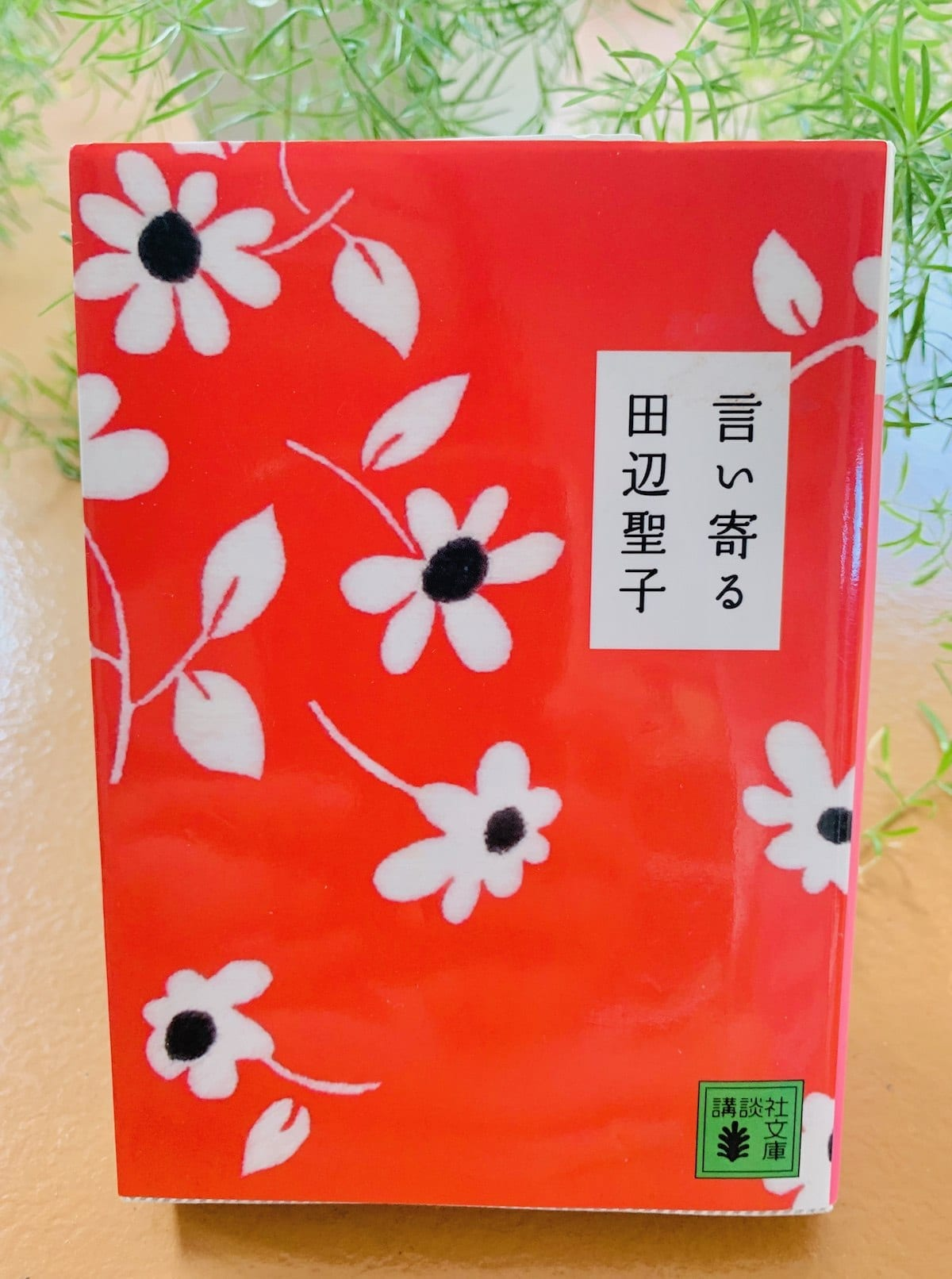 This English excerpt from Iiyoru was translated from this Tanabe Seiko book