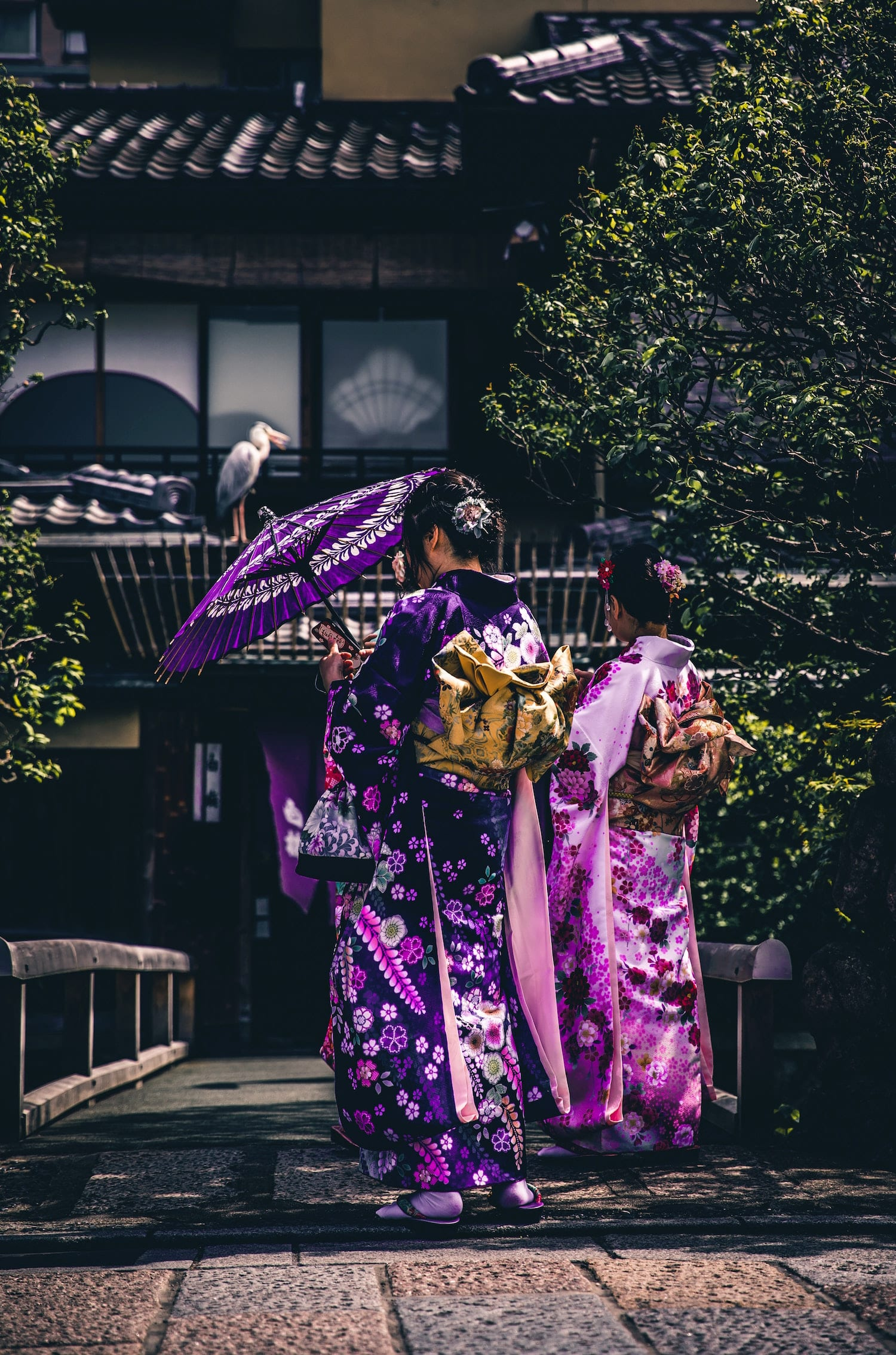 Kyoto Culture, Nihon Hustle